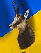 jagd-noe_Header_Logo